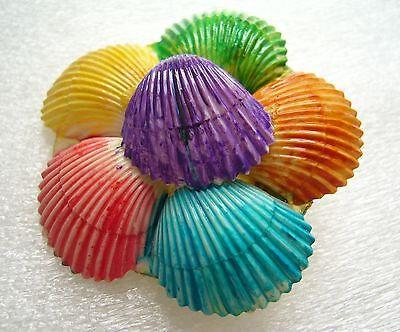 Vintage 1940 hand painted celluloid shells pin / brooch